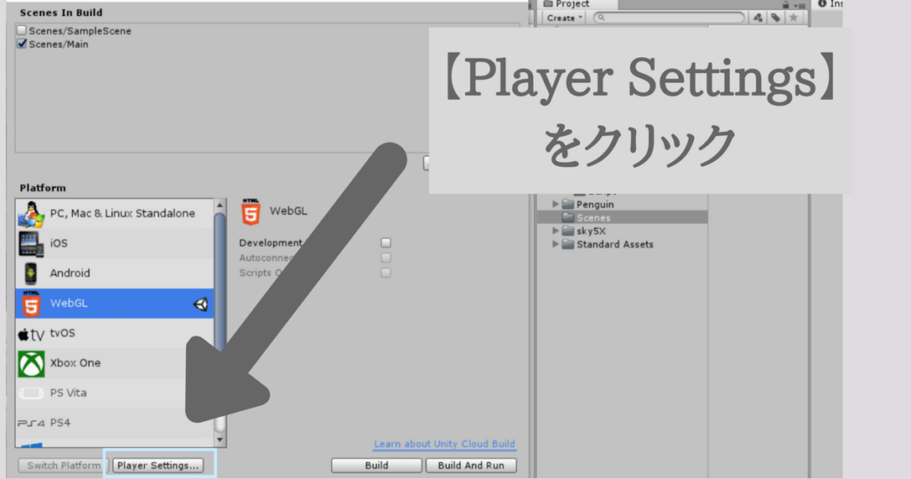 Player Settings