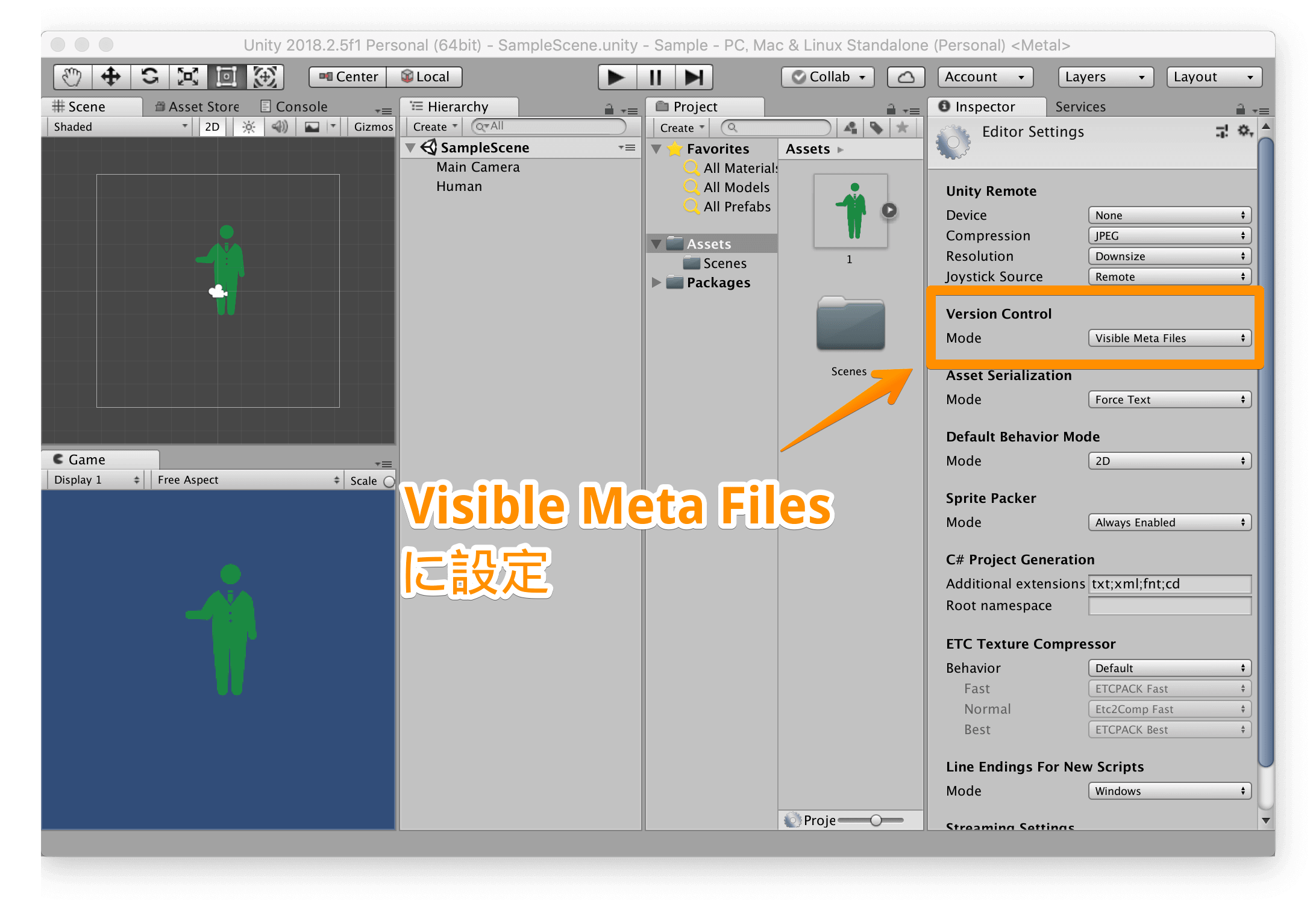 「Version Control」を「Visible Meta Files」にする